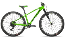 Rock Machine Thunder 29  gloss DVO green/gloss silver/black 2021